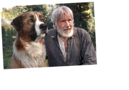 The Call Of The Wild How A Cg Dog Named Buck Held His Own With Harrison Ford Hot Lifestyle News
